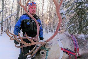 Reindeer-farm-Arkadia-Kemi-Taxari-Travel-Lapland-13