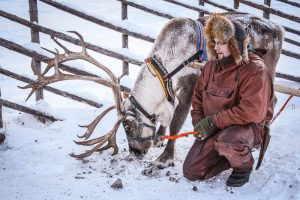 Reindeer farm-Rovaniemi-winter-Taxari-Travel-Lapland