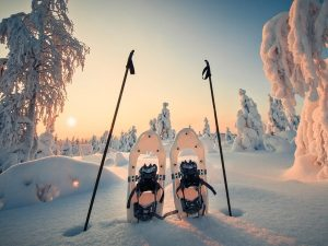 Snowshoes-tour-Rovaniemi-Taxari-Travel-Lapland-02