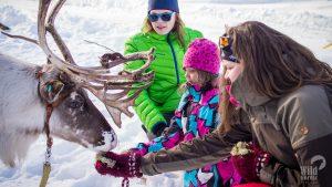 Reindeer-safari-Levi-Winter-Taxari-travel-Lapland-01