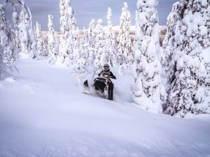 Arctic-Forest-snowmobile-safari-Taxari-Travel-Lapland-01