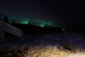 Northern-Lights-Taxari-Travel-Lapland