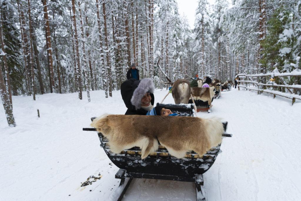 Reindeer-safari-Sealapland-Taxari-Travel-Lapland